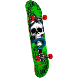 Skate Complet Powell Peralta Skull and Snake 7.75 2019 pour homme