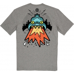 Tee Shirt Element Rickhat Grey Heather 2020 pour homme