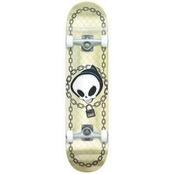 Skate Complet Blind Chain Link Premium Gold Foil 7.75 2020 pour homme