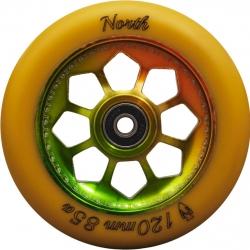 Roue North Pentagon Gum Rasta 120mm 2020 pour
