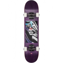 Skate Complet Globe Mt Warning Micro 6.5 2021 pour homme
