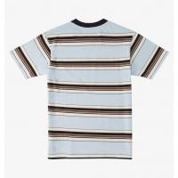 Tee Shirt DC Shoes Bully Stripe  2021