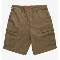 Short DC Shoes Warehouse Cargo Ivy Green 2021